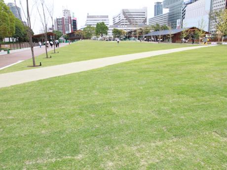 天王寺公園「てんしば」の芝生広場